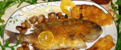 Tarator Soslu Mercan Balığı